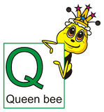 Queen bee holding a sign with the letter Q Stock Image