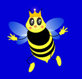 Queen bee vector Stock Images