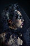 Queen of black swans Stock Photos