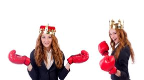 The queen boxer businesswoman isolated on white. Queen boxer businesswoman isolated on white Stock Photography