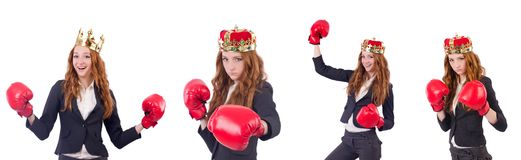 The queen boxer businesswoman isolated on white. Queen boxer businesswoman isolated on white Stock Photo