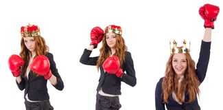 The queen boxer businesswoman isolated on white. Queen boxer businesswoman isolated on white Stock Photos