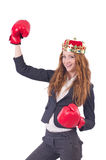 Queen boxer businesswoman Stock Images