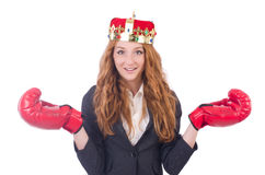 Queen boxer businesswoman Stock Image