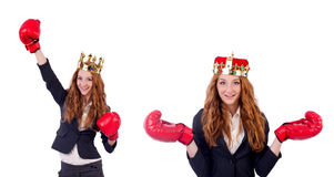 The queen boxer businesswoman isolated on white Royalty Free Stock Image