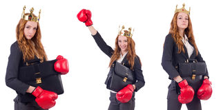 The queen boxer businesswoman isolated on white Royalty Free Stock Photos