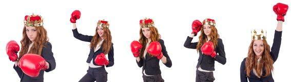 The queen boxer businesswoman isolated on white Stock Images