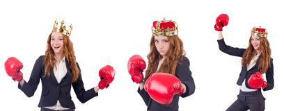 The queen boxer businesswoman isolated on white. Queen boxer businesswoman isolated on white Royalty Free Stock Images