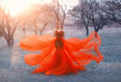 Queen in bright long elegant flying red dress poses for photo, woman with dark hair and crown on her head puts hands on. Her shoulders, sorceress objects to royalty free stock photos