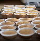 Queen cakes freshly baked Royalty Free Stock Image