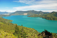 Queen Charlotte track Stock Photography
