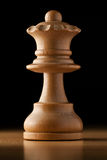 Queen chess Stock Images