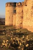 Queen Darejan (Tamarisi) fortress (Kvemo-Kartli, Georgia) Royalty Free Stock Images