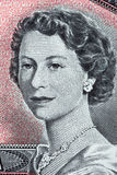Queen Elizabeth II a portrait from old Canadian dollars Stock Image
