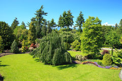 Queen Elizabeth park. Sunny afternoon at Queen Elizabeth park, Vancouver Canada Stock Photography