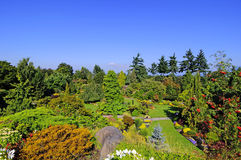 Queen Elizabeth Park Royalty Free Stock Photography