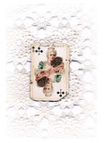 Queen of flowers. Old playing cards with handwritten on lace Stock Image