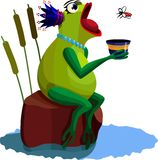 Queen frog Royalty Free Stock Image