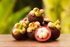 Queen of fruit, Mangosteens and cross section showing the white skin over the wooden table in the garden Stock Image