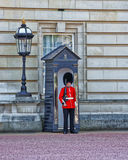 Queen Guard at his post at Buckingham Palace in London Royalty Free Stock Photo