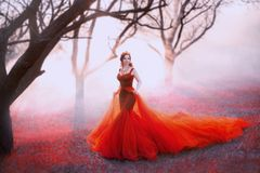 Queen in long red dress with magnificent lush train, woman walks alone through scarlet autumn forest, gold crown and royalty free stock image