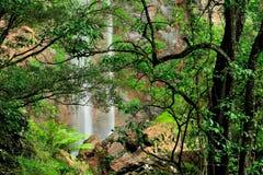 Queen Mary Falls of Queensland Stock Photos