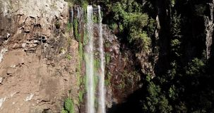 Queen Mary Falls in Queensland. Queen Mary falls located in the Darling Downs region of Queensland, Australia stock footage