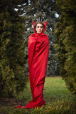Queen in the red cloak Stock Images