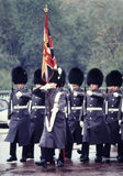 Queen's Guard Stock Image
