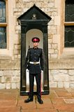 The Queen's Guard Royalty Free Stock Photo