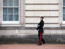 Queen's Guard at the Buckingham Palace Royalty Free Stock Photos