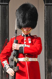 Queen's Guard Royalty Free Stock Photography