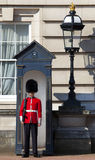 Queen's Guard outside Buckingham Palace in London. LONDON, UK - MAY 16TH 2014: A Queen's Guard outside the historic Buckingham Palace in London on 16th May 2014 Stock Photo