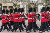 Queen's guards Royalty Free Stock Photo