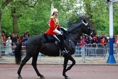 Queen's guards Stock Images