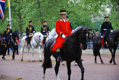 Queen's guards Royalty Free Stock Images