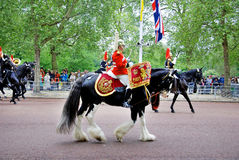Queen's guards Royalty Free Stock Image