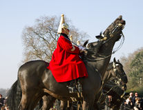 Queen's Horse Guard on duty. Stock Photography