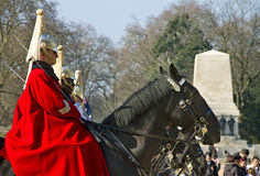 Queen's Horse Guard on duty. Royalty Free Stock Images