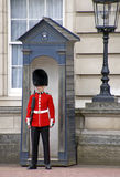 Queen's Royal Guard Royalty Free Stock Photos
