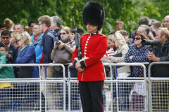Queen's Soldier at Queen's Birthday Parade Stock Images