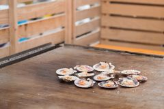 Queen scallops on the grill. Grilled queen scallops on the grill, typical food of Galicia, Spain Stock Photo