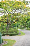 Queen Sirikit park Royalty Free Stock Images