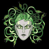 Queen of snakes. The female person in a frame of snakes Royalty Free Stock Image