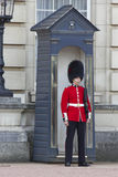 Queen Soldier Guard in Buckhingham Palace Stock Photos