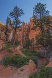Queen& x27; traccia del giardino di s, Bryce Canyon immagine stock