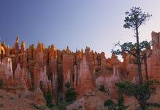 Queen& x27; traccia del giardino di s, Bryce Canyon fotografia stock libera da diritti