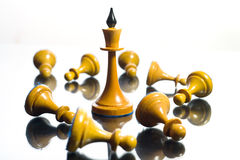 The queen wins victory. Chess. The queen wins victory Royalty Free Stock Photos
