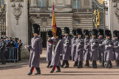 Queen's Guard - Buckingham Palace - London - UK Stock Image