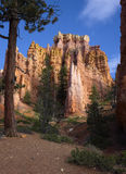 Queens Garden. In Bryce Canyon National Park, Utah royalty free stock images